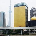 Tokyo Sky Tree吾妻橋端拍 (10)