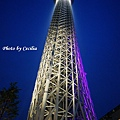 Tokyo Sky Tree東京晴空塔 (1)
