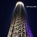 Tokyo Sky Tree東京晴空塔 (10)