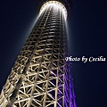 Tokyo Sky Tree東京晴空塔 (13)
