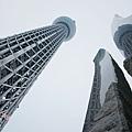 Tokyo Sky Tree東京晴空塔 (29)