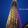 Tokyo Sky Tree東京晴空塔 (33)