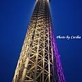 Tokyo Sky Tree東京晴空塔 (34)