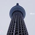 Tokyo Sky Tree東京晴空塔 (38)