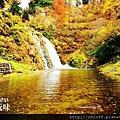 銀山公園及瀑布  (1)