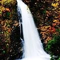 銀山公園及瀑布  (4)