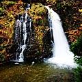 銀山公園及瀑布  (6)