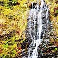 銀山公園及瀑布  (5)