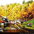 銀山公園及瀑布  (7)