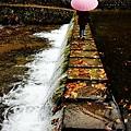 銀山公園及瀑布  (9)