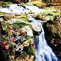 銀山公園及瀑布  (18)