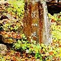 銀山公園及瀑布  (24)