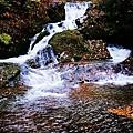 銀山公園及瀑布  (25)