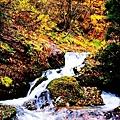 銀山公園及瀑布  (26)