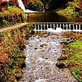 銀山公園及瀑布  (31)
