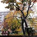 京都-鳥彌三 (21).jpg