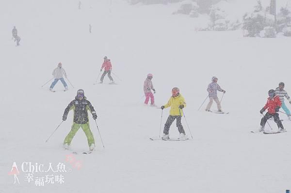 苗場王子滑雪場 (101)