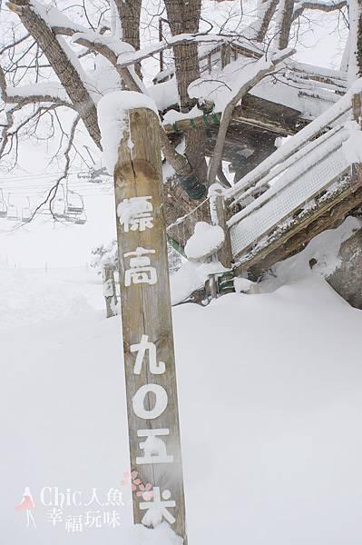 苗場王子滑雪場 (96)