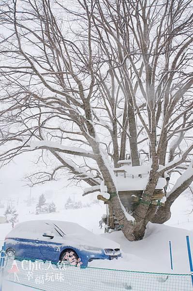 苗場王子滑雪場 (94)