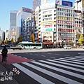 JR九州Bloosom Shinjuku Hotel (109)
