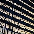 Daiwa Ubiquitous Computing Research Building by KENGO KUMA (27)