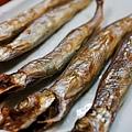 小樽-魚一心 (6)