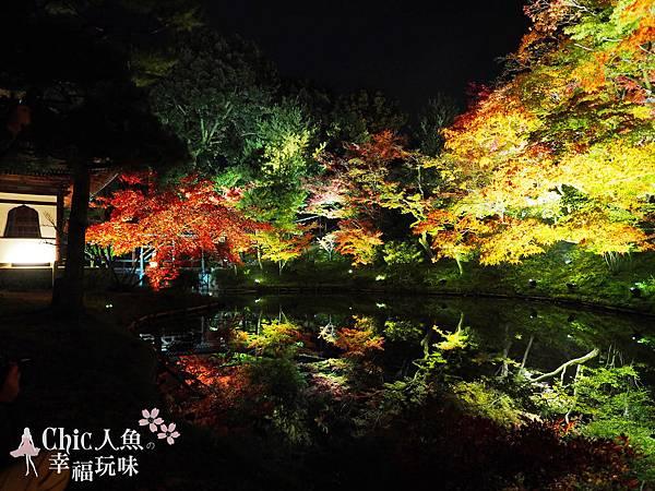 高台寺2014秋之夜間特別拜觀 (106)