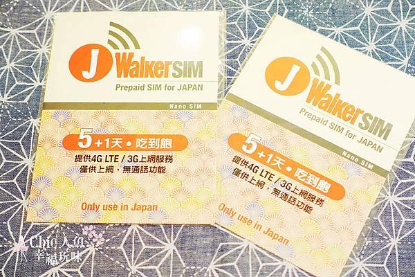 J Walker SIM (10)