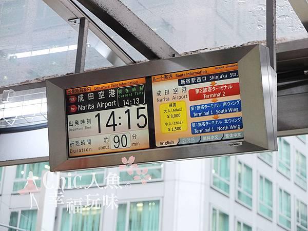 成田空港新宿搭乘口23號 2012 (5)