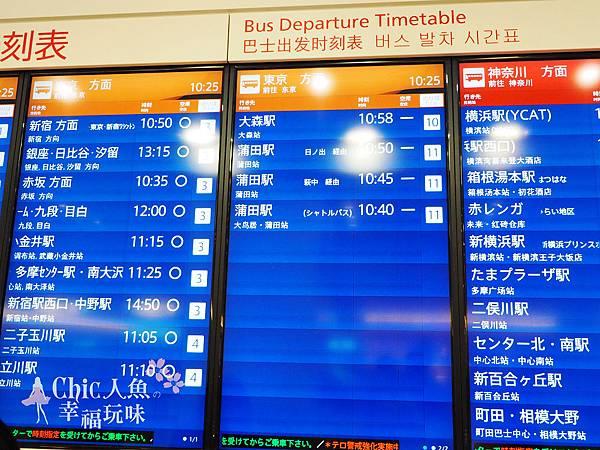 羽田空港利木津巴士 (2)