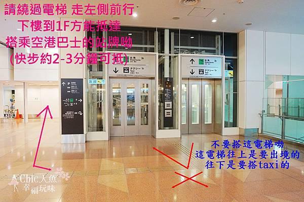 羽田空港利木津巴士2010 (28)-1