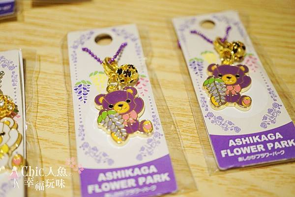 足利公園紫藤雨 (388)
