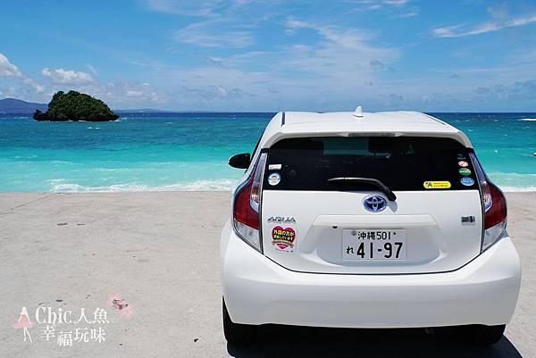 2 沖繩自駕遊TO美之海水族館-途中下車 (11)
