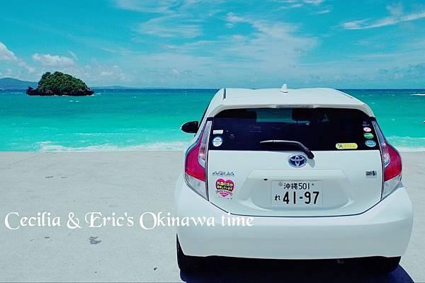 2 沖繩自駕遊TO美之海水族館-途中下車 (26)