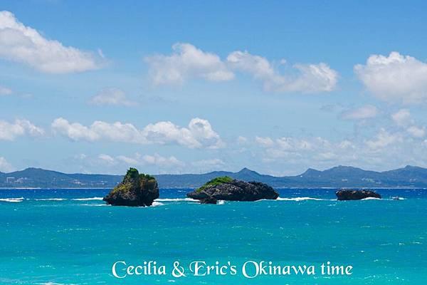 2 沖繩自駕遊TO美之海水族館-途中下車 (27)