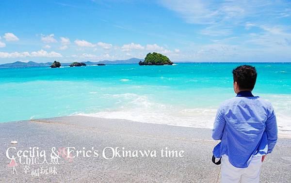 2 沖繩自駕遊TO美之海水族館-途中下車 (28)