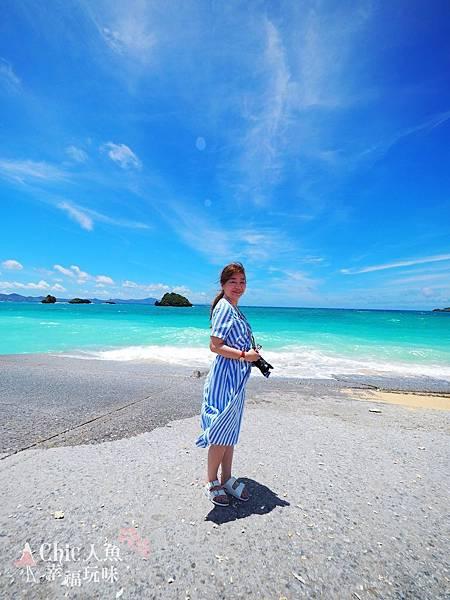 2 沖繩自駕遊TO美之海水族館-途中下車 (33)