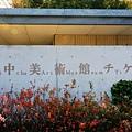 直島地中美術館 (157)