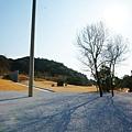 2011直島李禹煥美術館 (92)