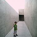 2005直島地中美術館 (10)