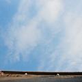 直島Benesse House 2011 二回目 (83)