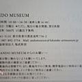 2013 直島ANDO MUSEUM (10)