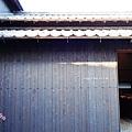 2013直島ANDO MUSEUM (63)