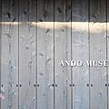 2013直島ANDO MUSEUM (64)