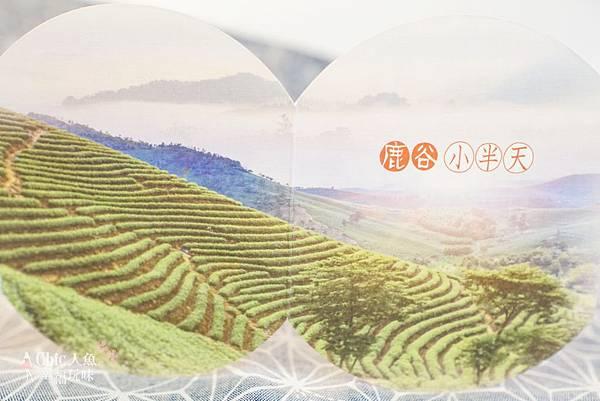 鹿谷烏龍茶-小半天美人茶 (27).jpg