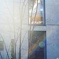安藤忠雄-光之教會-大阪 (23)