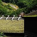 乳頭溫泉鄉7湯滿喫湯巡制霸2013 -5 黑湯溫泉 (30).jpg