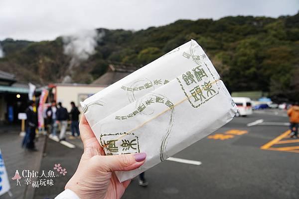別府溫泉-海地獄 (104).jpg