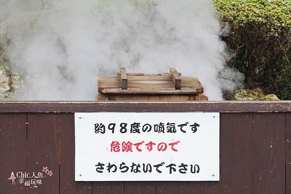 別府溫泉-海地獄 極樂饅頭 (3).jpg