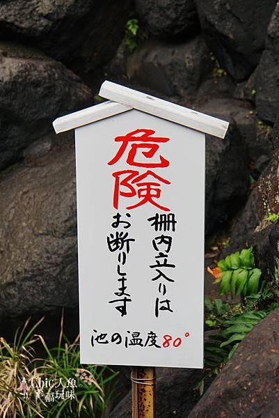 別府7地獄-龍卷地獄 (3).jpg